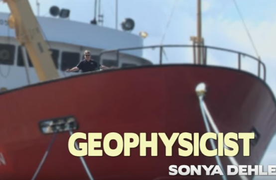 Geophysicist